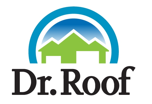 Dr Roof logo