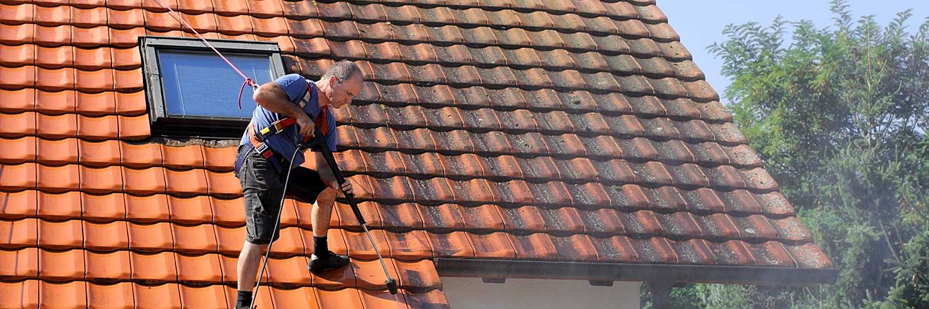Roof maintenance - roof cleaning